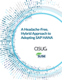 A Headache-Free, Hybrid Approach to Adopting SAP HANA