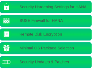 THE FOUR MAIN TOPICS OF THE OS SECURITY HARDENING FOR HANA