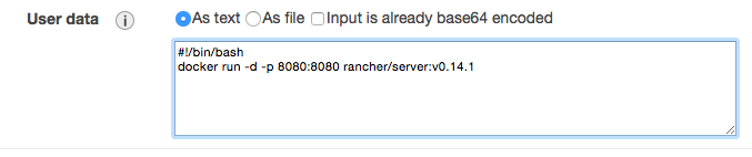 AWS-RancherServer-userData